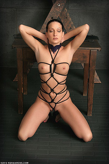 Bondage submissives